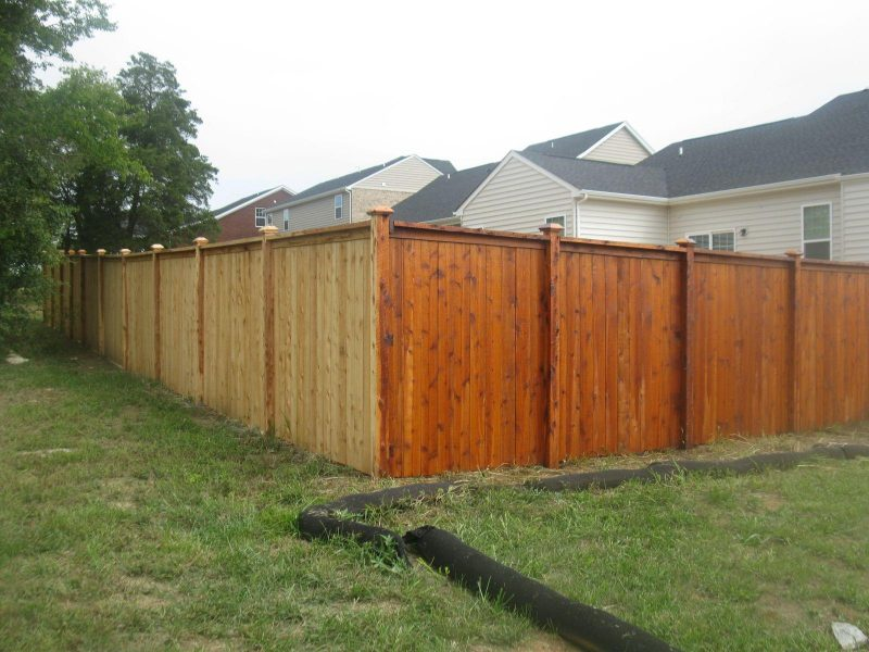 Stain fence